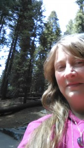 Blue Rays light infused with the Canopy of the Sequoias and Redwoods  Sequoia Ceremony 4-23-14